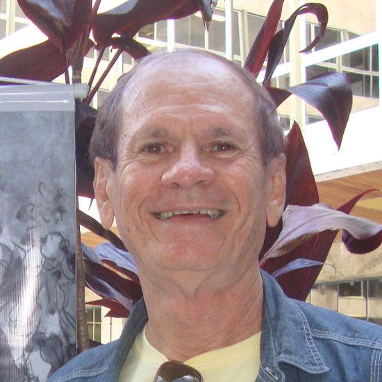 Raymundo Luiz Lopes